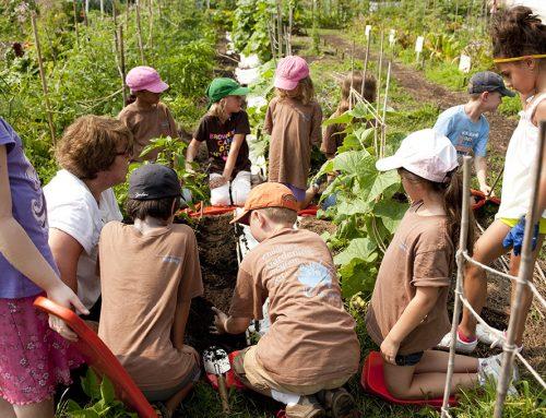 Learning Through Gardening